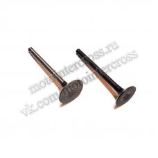 Клапаны (компл. 2шт) 4T двиг. CB250 стандартные d=27/31,5 SM-PARTS